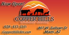 CopperHillsVet_sidebar-AD-295x150